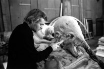 """At work on the set of Alien, forming the """"space jockey."""""""